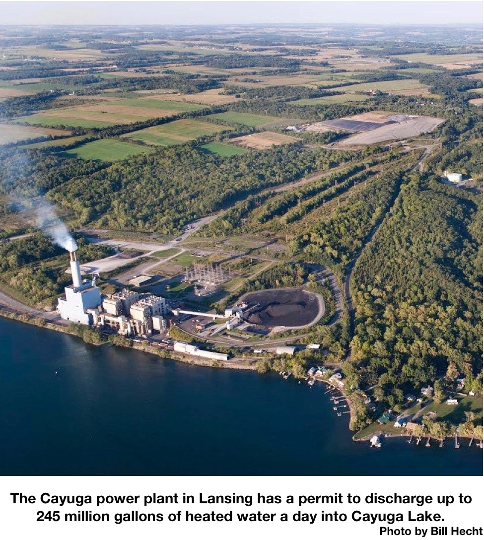 MANTIUS: Cuomo's conflicting interests collide over plan for Cayuga plant