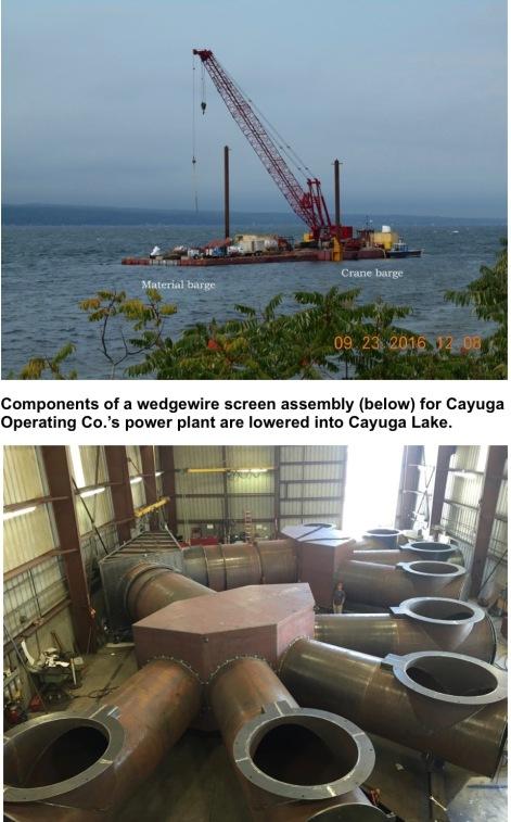NewCayugaScreensREADY