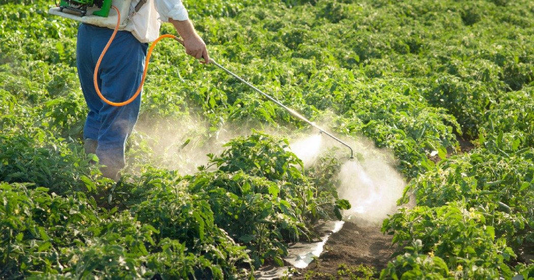 MANTIUS: Cuomo pushes New York to lead in pesticide restriction